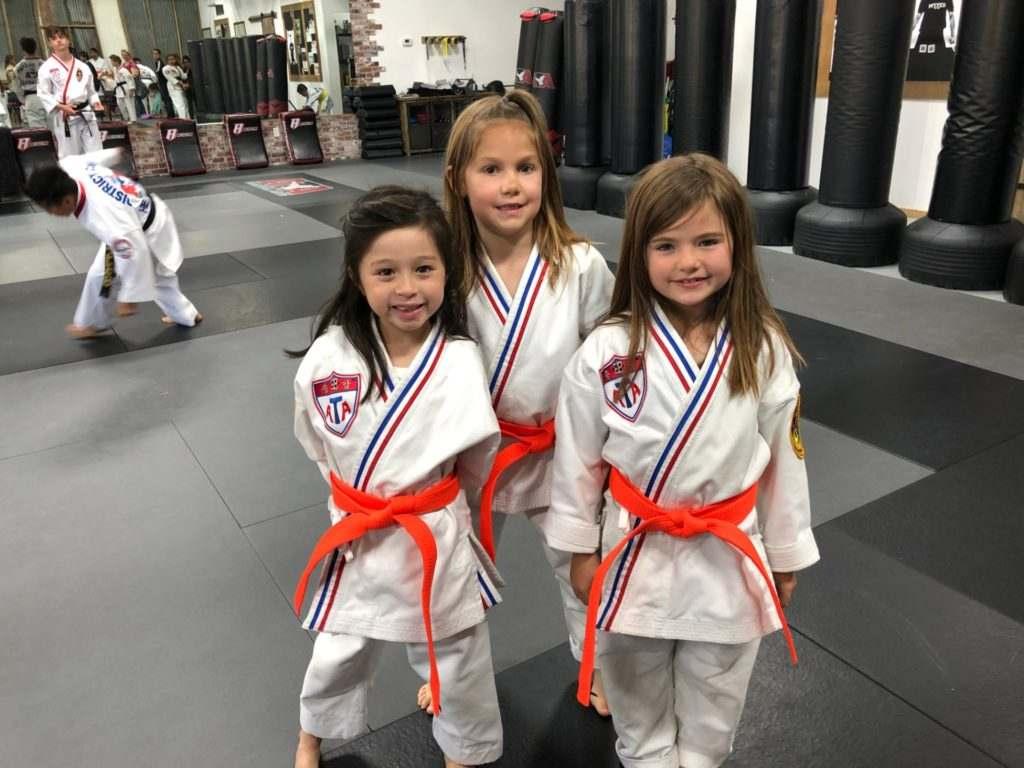 3dd 1024x768, Gold Medal Martial Arts in Santa Clarita CA